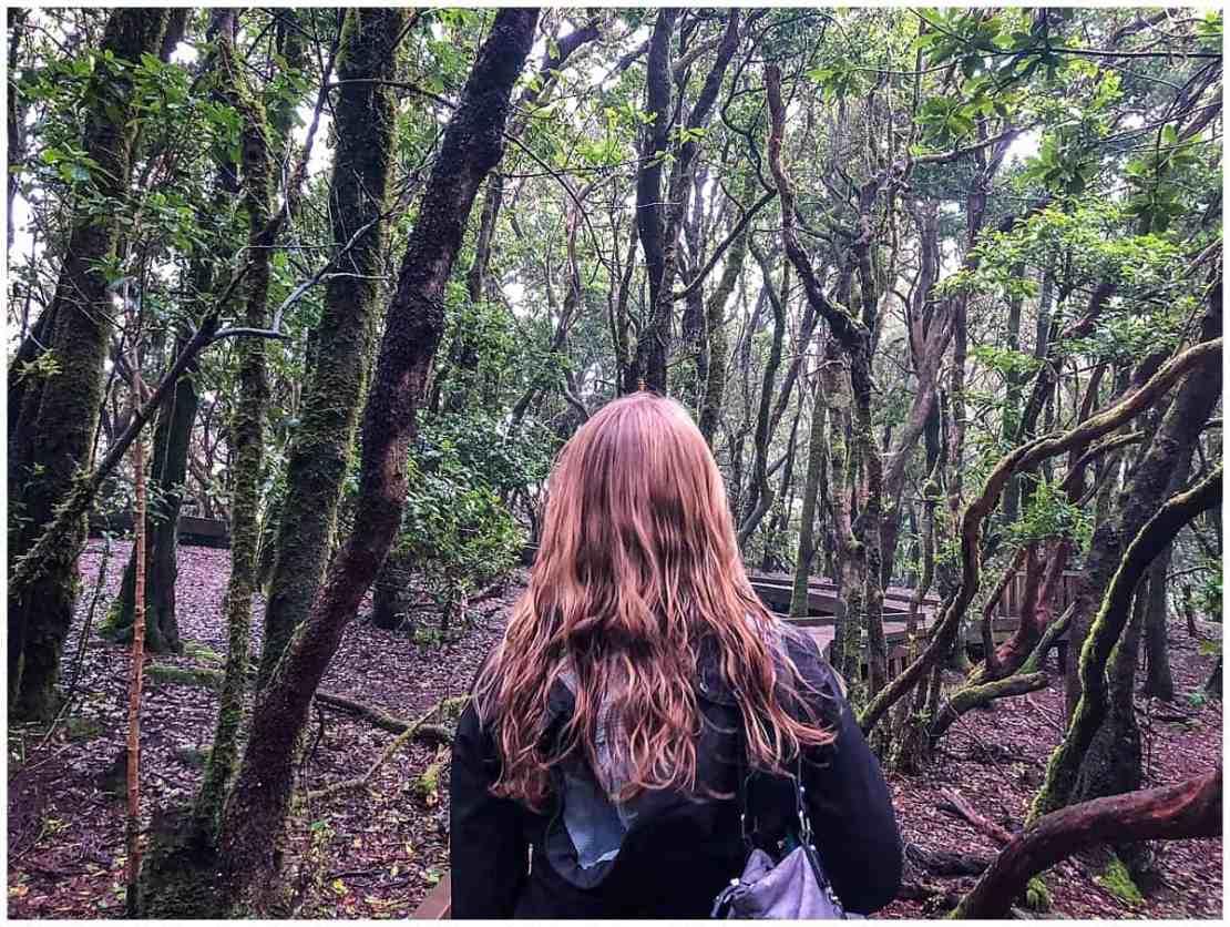 Abigail King walking through Anaga Natural Park