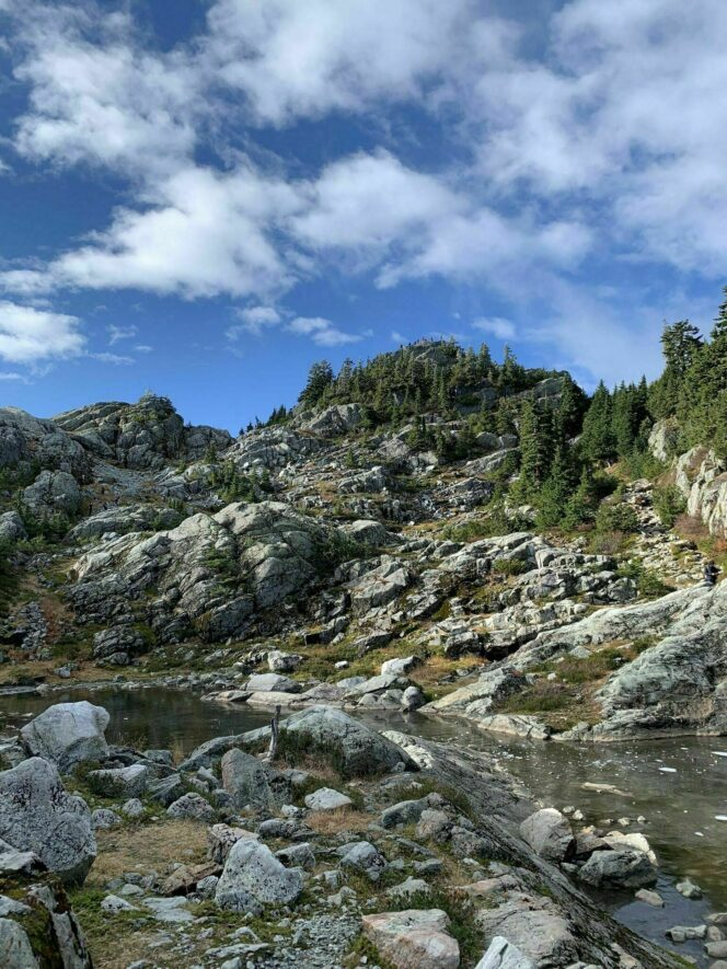 Mt seymour is vancouver's only family owned and operated ski area delivering a relaxed west coast feel only 30 minutes drive from downtown vancouver. July S Vancouver Hike Of The Month Mount Seymour Inside Vancouver Bloginside Vancouver Blog