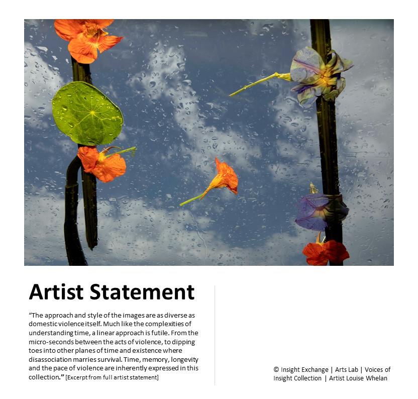 Voices of Insight Collection - Artist Statement