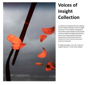 Voices of Insight Collection Cover