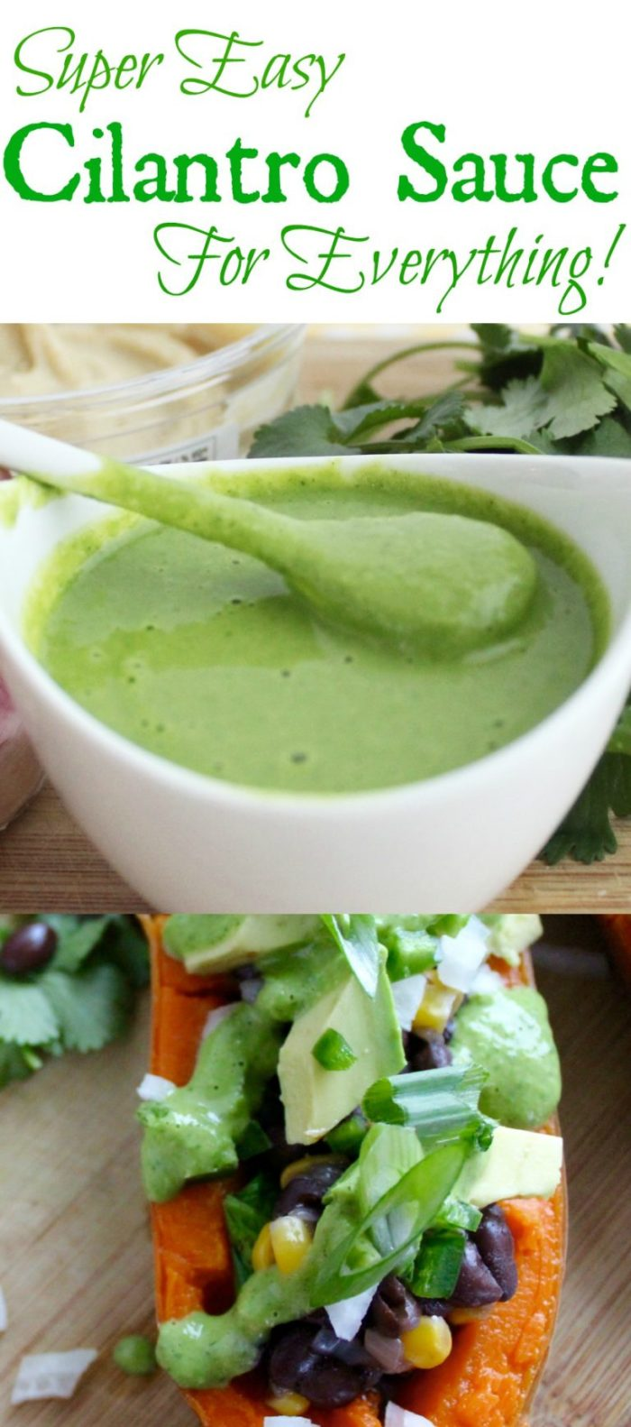 Super Easy Cilantro Sauce that goes with everything! Tacos, wraps, dipping and more!