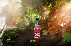 Carlsberg Red Hops