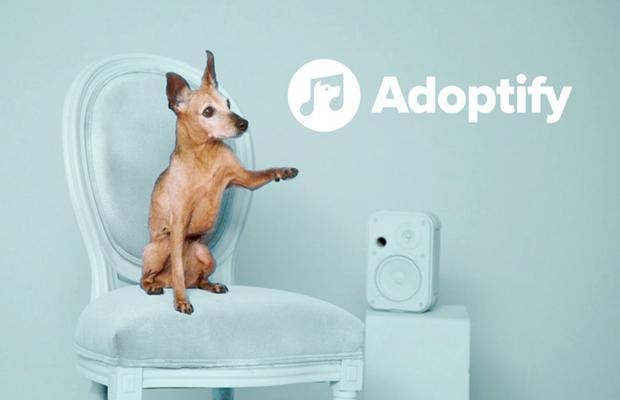 spotify adoptify