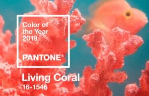 Destacada-Living-Coral-Pantone-2019