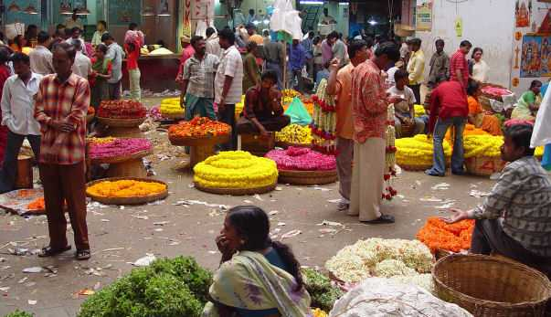 Entrepreneurship and economic development in a developing country a case study of india