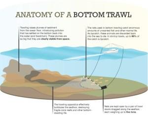 bottom_trawling