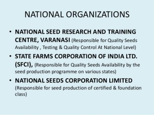 introduction-of-seed-production
