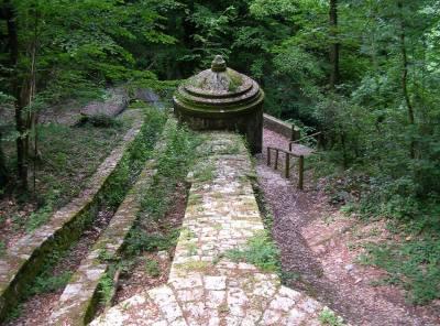 Le Colline Livornesi e la Foresta della Valle Benedetta