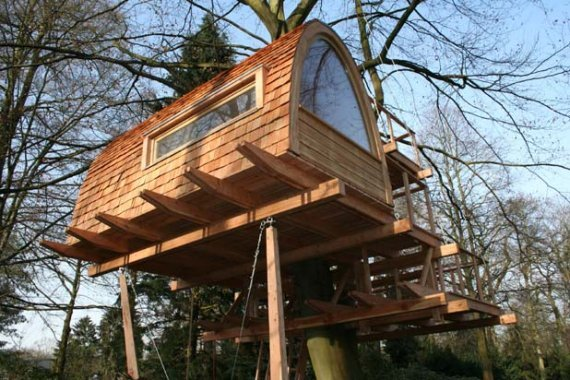 casas na arvore 8 Sempre quis ter uma casa na árvore