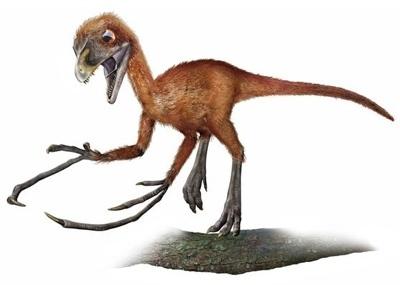 epidendrosaurus800pn0-tm