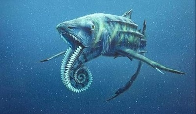 helicoprion23d-tm
