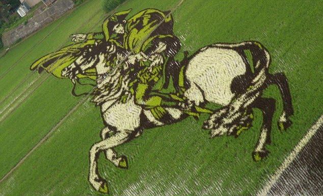 plantações de arroz no Japão 04