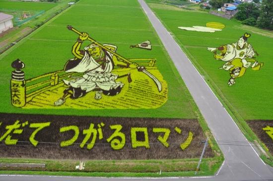 plantações de arroz no Japão 22