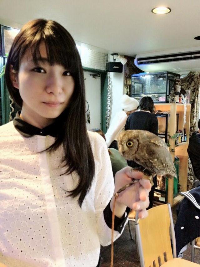 cafes_coruja_japao_18