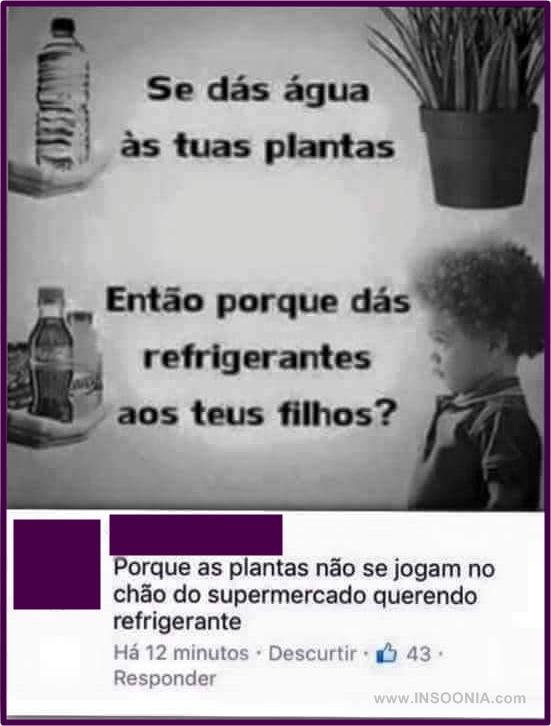 plantas vcs refrigerantes