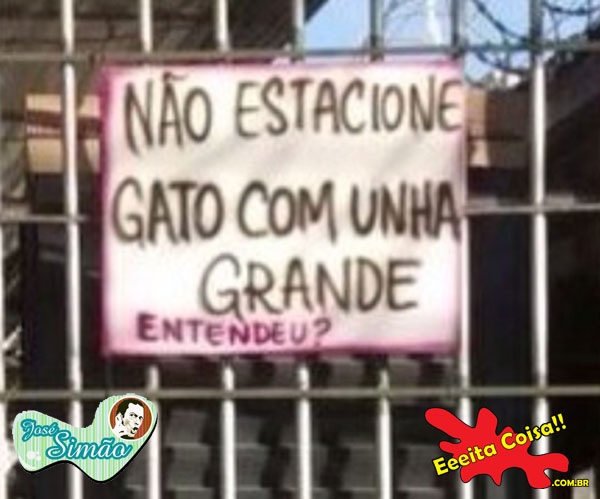 placas-brasileiras-04