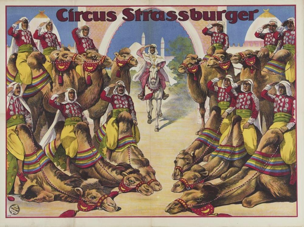 Circus-land-6