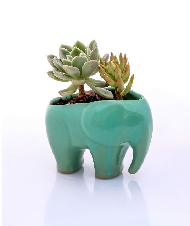 gifts-for-elephant-lovers-9__605