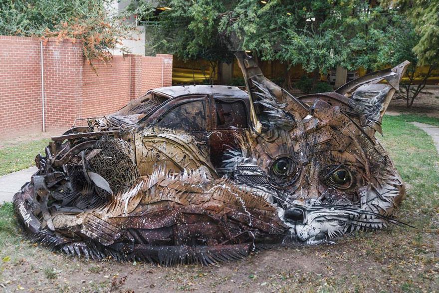 bodalo-ii-lixo-animais-6