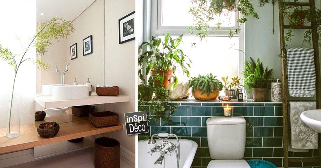 salle de bain avec des plantes