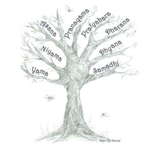 8 ramas del asthanga yoga