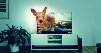 Interior Tv Kangaroo Road Room  - DarkmoonArt_de / Pixabay
