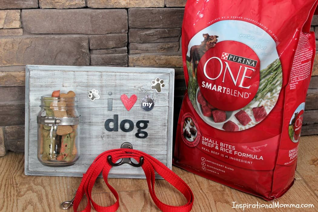 This DIY Dog Treat & Leash Station conveniently stores treats and a leash while adding a personal touch to a dog-lover's decor!