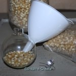 Fill glass ornaments with popcorn kernels for Fall Decorations!