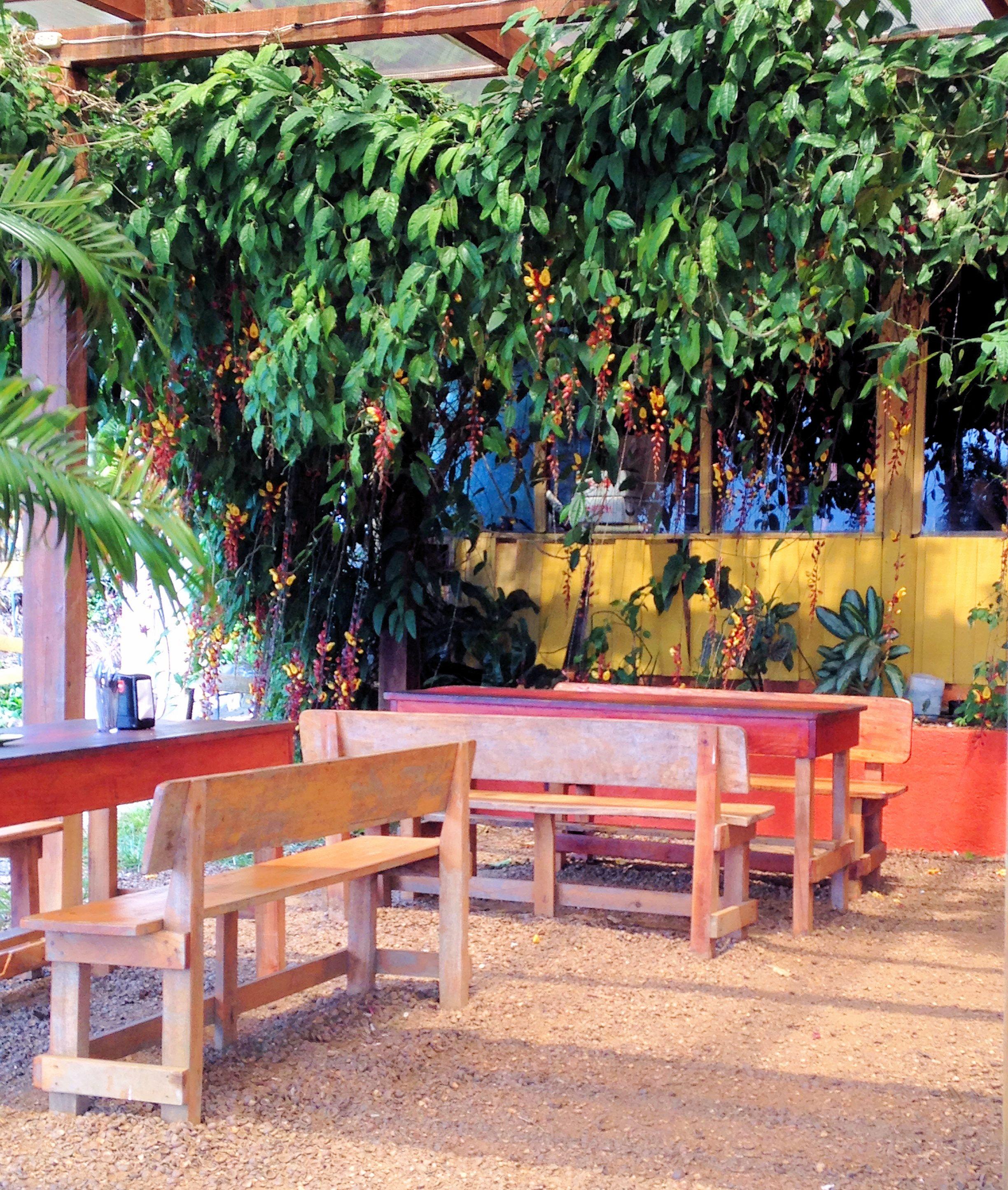 Macadamia Cafe_Costa Rica_Arenal Volcano_Inspired Edibles