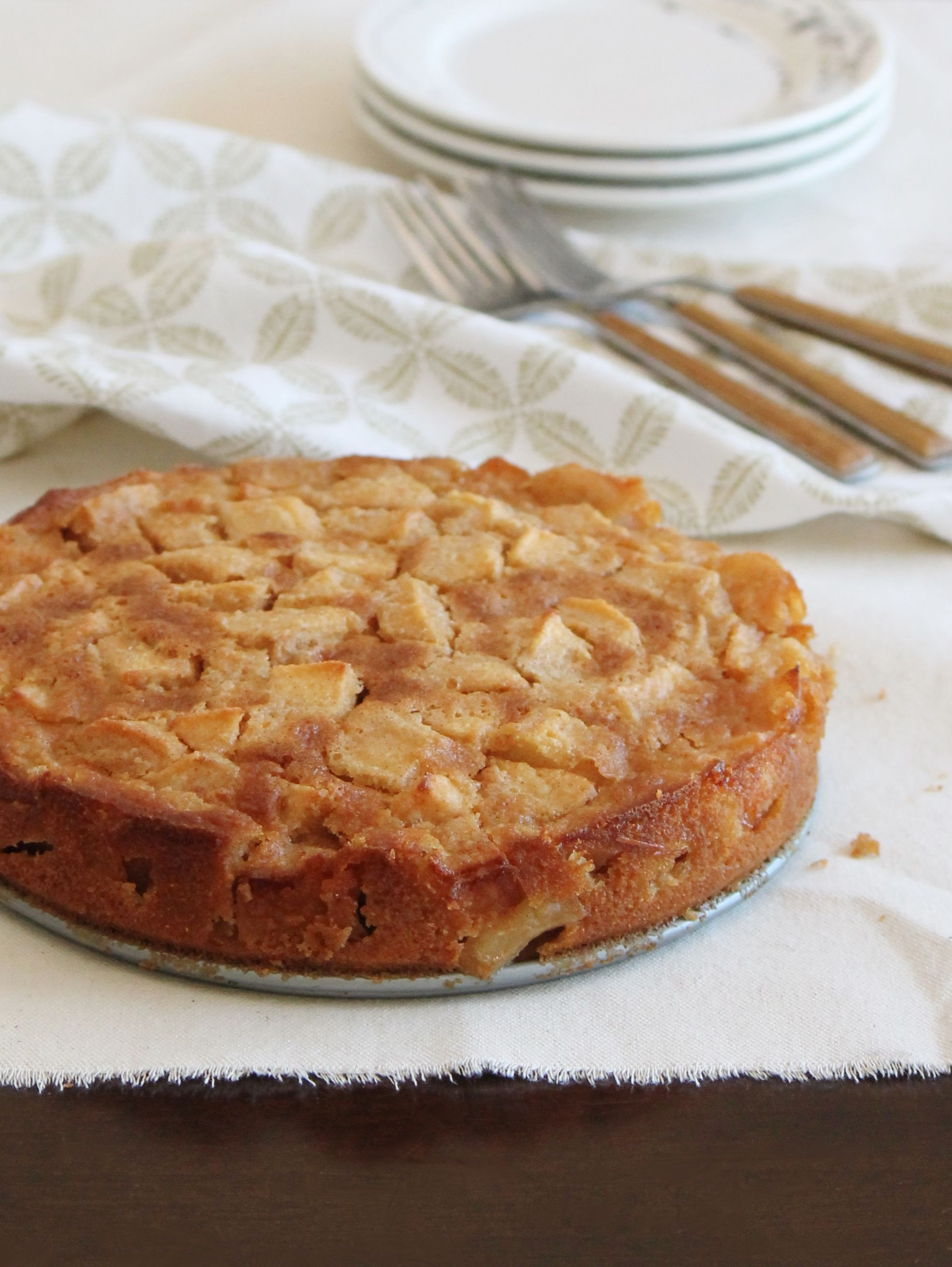 autumn-apple-cake-gf