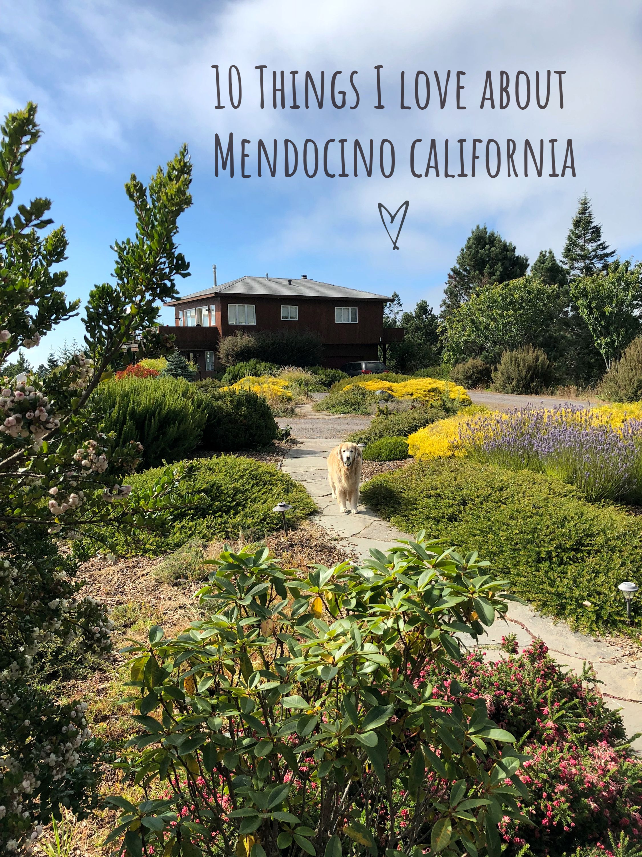 10 Things I Love About Mendocino California - Inspired Edibles