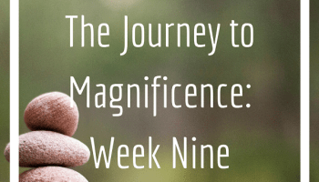 JTM Week nine Instagram