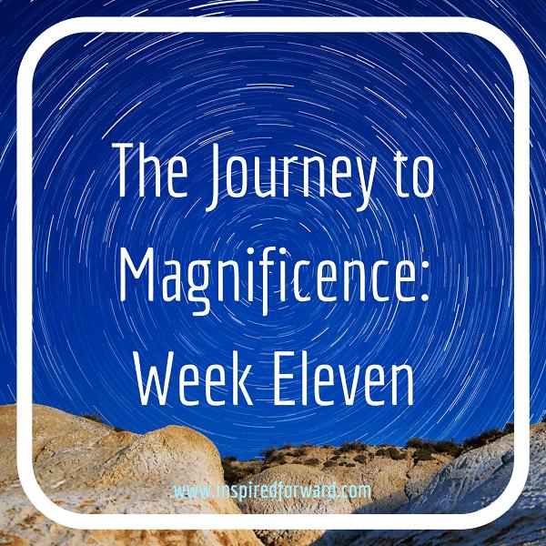 JTM Week Eleven Instagram