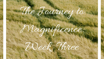 JTM Week Three Instagram