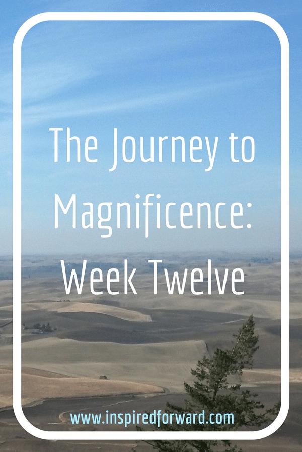 JTM Week Twelve Pinterest v2