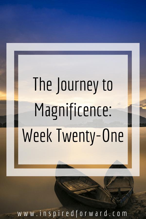week twenty-one pinterst-v1