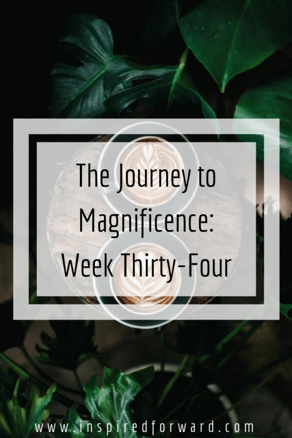 week thirty-four pinterest