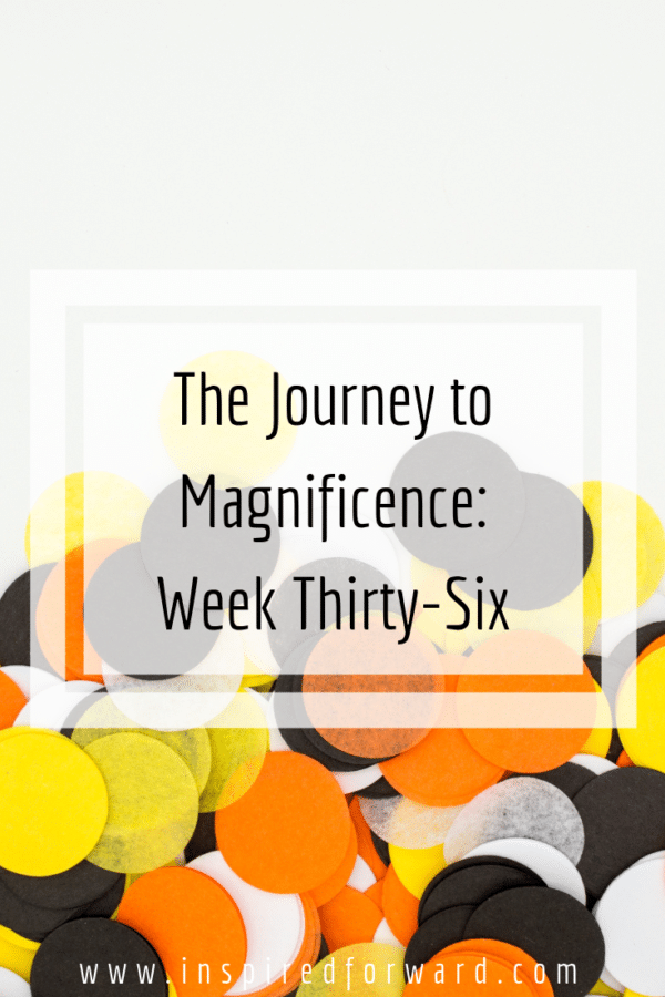 week thirty-six pinterest