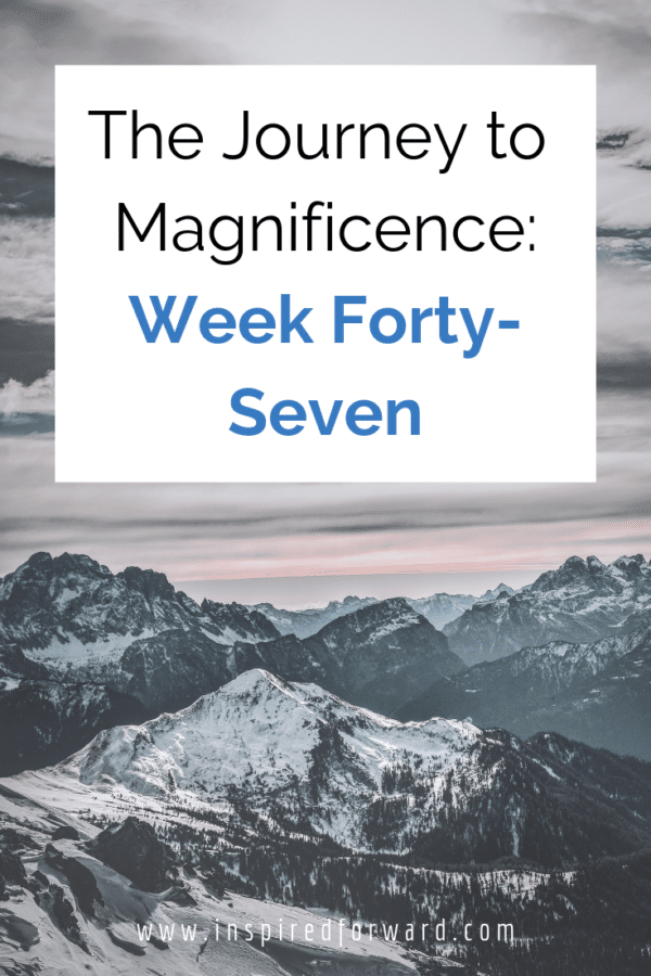 Week forty-seven brought a new year, hitting the ground running with new goals, and the birth of a new online course idea for type 1 diabetics!