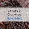 "The first 2 months of the year are ""What's Next?"" after writing a book, also called NaNoEdMo. This month I'm going to finish writing and start self-editing."