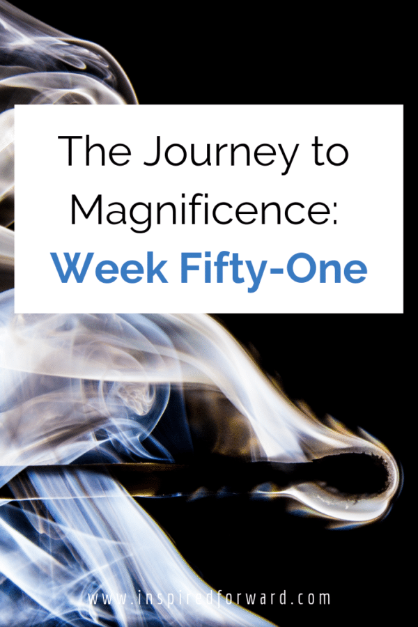 """Week fifty-one, I'm almost """"done""""! Some ups and downs in terms of plans, but overall a great week that once more is moving me towards my goals for 2019."""