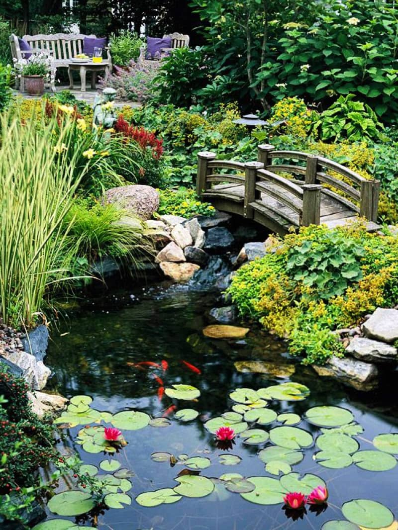 Backyard Pond Designs on Yard Ponds Ideas id=43358