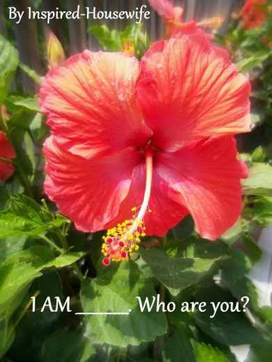 Inspired-Housewife: 5 Minute Challenge I AM _______ Do you know who you are?  Only 5 minutes to write unedited about yourself.  #IAM #Whoareyou?