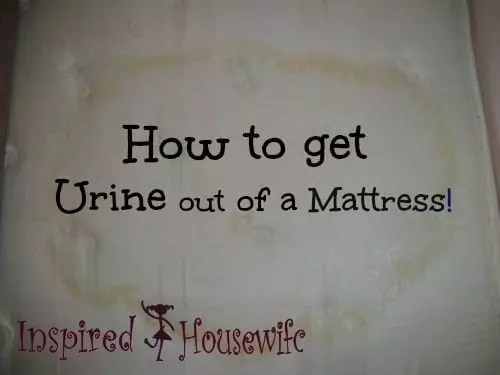 How to Get Pee Stains Out of a Mattress