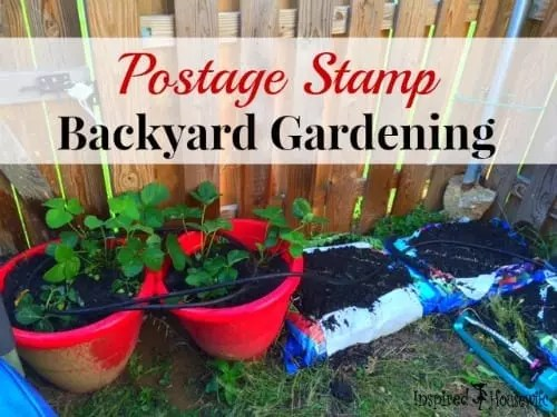 Postage Stamp Backyard Gardening