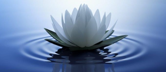 Experiencing the Power of Silence   Inspired Stillness   Brahma ...