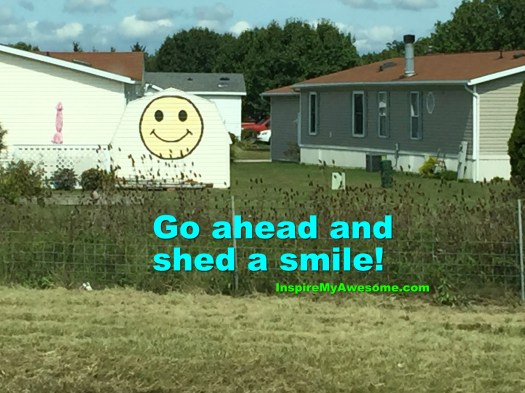 Shed a Smile