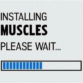 Installing MUSCLES. Please wait …