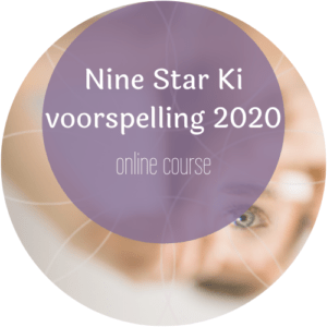 Nine Star Ki voorspelling, online course
