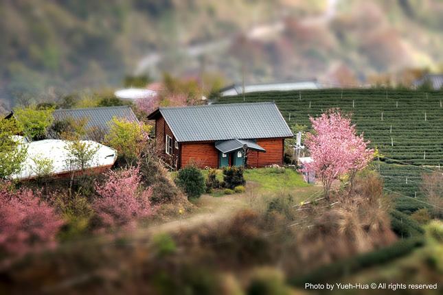 Ching-Jing-Farm